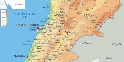 Carte du Liban physique